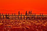 Sunset on the shores of the Red Sea