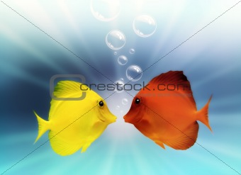 Fish and Bubbles with light, underwater