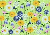 Meadow flowers (vector)