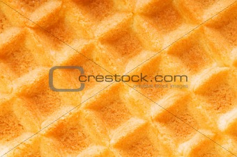 Close up of bread crust