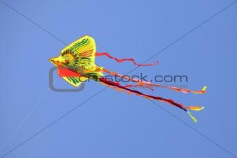 Kite in the sky
