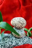 Spa concept of stones and a branch  bamboo