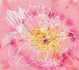 peony  flower on batik background