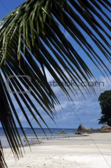 beach on Seychelles Island