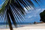 beach on Seychelles Island