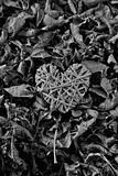 heart in dead leaves