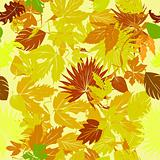 Leaves carpet background