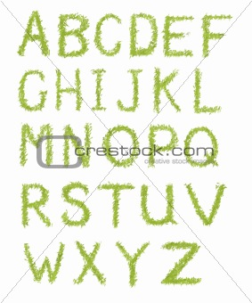 Alphabet letters of green grass isolated on white