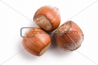 three hazelnuts