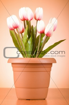 Bunch of tulip flowers on the table