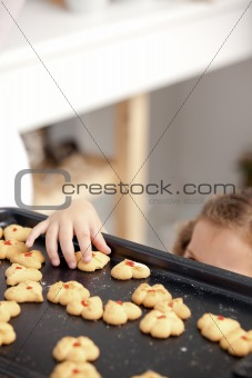 Close up of a little girl taking a cookie in the kitchen