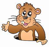 Cartoon groundhog lurking from hole