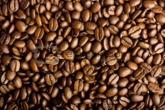 image 3388357: coffee grains from crestock stock photos, Modern powerpoint