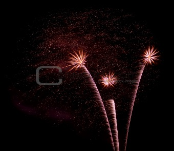 Fireworks Against the Night Sky Isolated on Black