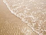 Foamy Ocean Shoreline at a Sunny Beach
