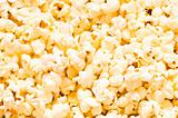 Close up of background - popcorn kernels