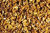 Background made of fresh walnut nuts