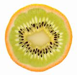 Genetic engineering - kiwi inside of an orange