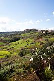 Landscape in Gozo Island, Malta