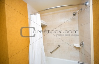 Bath tub and shower in the bathroom