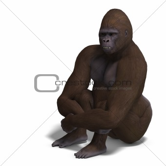 gorilla sitting anf waiting