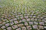 A cobblestone with grass bricks showing perspective.