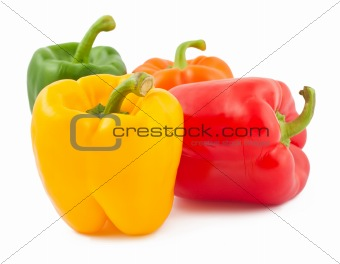 Four peppers on white background