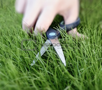 Cutting the grass with a pair of scissors