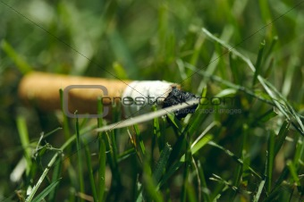 Cigarette butt in the grass