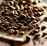 Spread around coffee beans