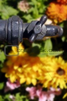 Antique Water Spigot