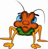 Long-legged Beetle