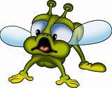 Green little fly