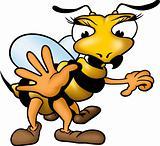 Wasp greeting