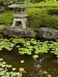 zen garden&pond