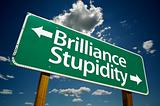 """Brilliance, Stupidity"" Road Sign"