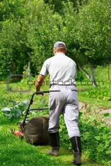 Gardening - cutting the grass