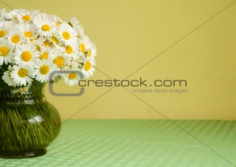 Daisy bouquet in a vase