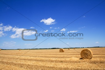 Wide stubble field with hay bales