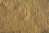 Fine grained dry mud