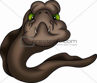 Fish moray eel