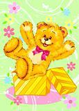 teddy bear 007