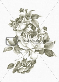 Freehand drawing - rose 001