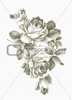 Freehand drawing - rose 002