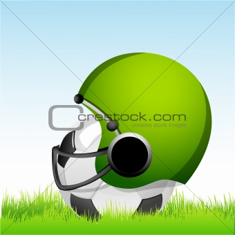 football with helmet on grass