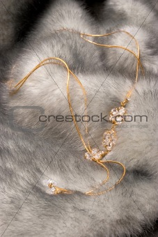 Beautiful chain on fur