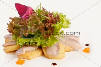 Sashimi with salad