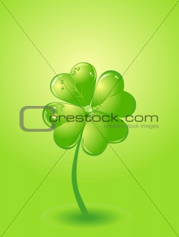 Four-leafs clover