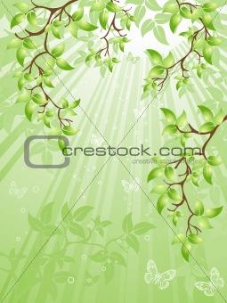 green leaves, vector illustration