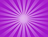 Violet Sun Light